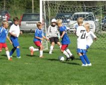 ungdomsfotbolen